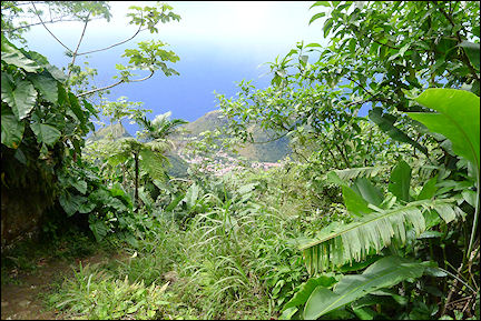 Leeward Islands, Saba - View from Mount Scenery
