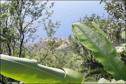 Leeward Islands, Saba - View of village while climbing Mount Scenery