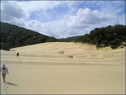 Australia, Fraser Island - Over a sandy plain to Lake Wabby