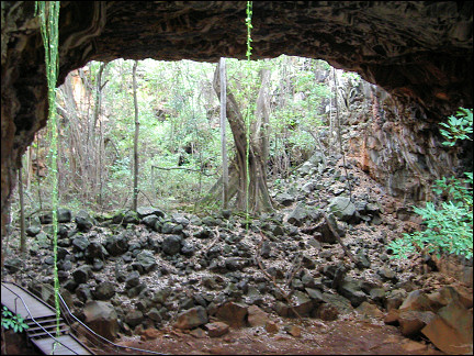 Australia, Undara National Park - Lava tunnel