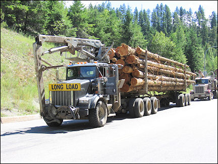 Canada, British Colombia and Alberta - Wood transport by truck
