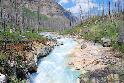 Canada, British Colombia and Alberta - Marble Canyon in Kootenay National Park