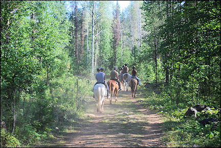 Canada, British Colombia and Alberta - Horseback riding in Wells Gray Provincial Park