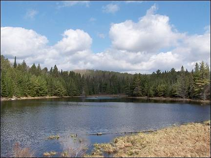 Canada - One of many pretty lakes in Algonquin