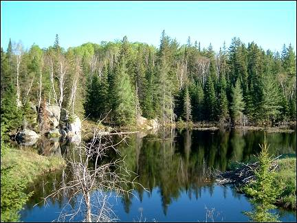 Canada - Algonquin Park, another pretty lake