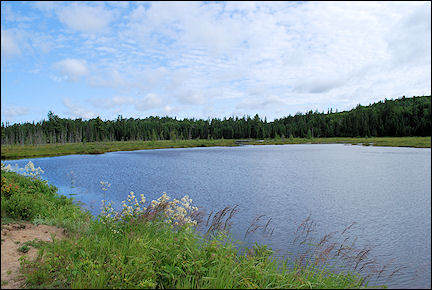 Canada, Ontario - Mizzy Lake Trail through Algonquin Provincial Park