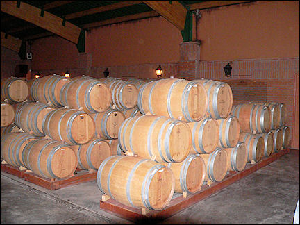 Chile - The wooden wine barrels are just for show