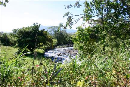 Costa Rica - Creek