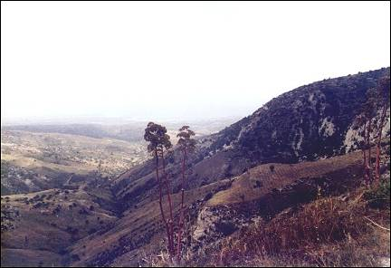 Cyprus - Akamas, view after climb