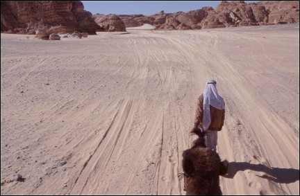 Egypt - Trudging through the desert