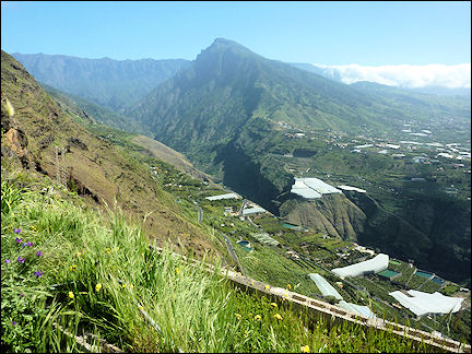 Spain, La Palma, Canary Islands - View of the great gorge from Mirador el Time