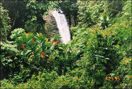 Fiji - Waterfall above the Coral Coast