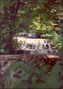 Hungary, Bükk Mountains - Waterfall in the greenery