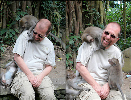 Indonesia, Bali - Sacred Monkey Forest Sanctuary, play ground for macaques