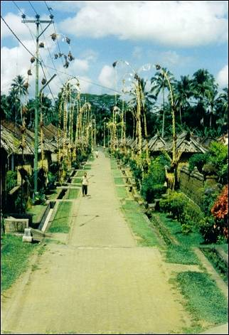 Indonesia, Bali - Penjors, decoration of bamboo poles