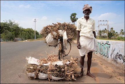 India, Tamil Nadu - Man with headscarf