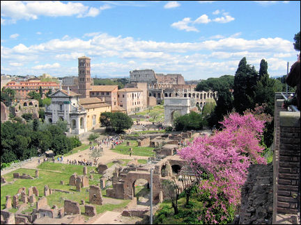Italy, Rome - Palatine Hill, view of Forum Romanum