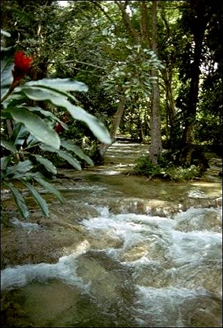 Jamaica - Dunn River waterfall