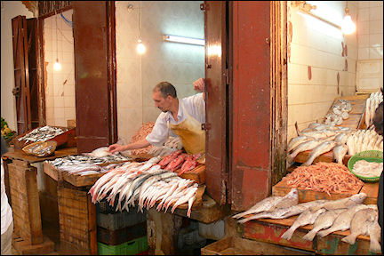 Morocco - Fès, fish stall in the medina