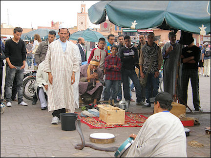 Morocco, Marrakech - Snakecharmers on Jemaa el-Fna