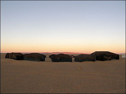 Morocco, Zagora - Bedouin tents in the morning sun