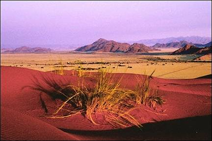 Namibia - The dunes get red