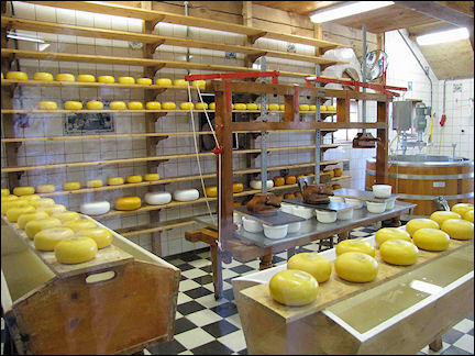 Netherlands, Amsterdam - Cheese factory at Zaanse Schans
