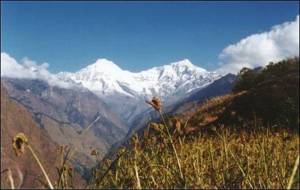 Nepal, Ganesh Himal Trek - The white peaks of the Ganesh Himal