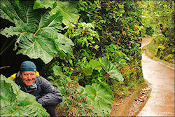 Travelogue Bicycle tour Costa Rica with 30 photos