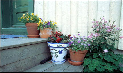 Sweden - Västervik, containers with flowers