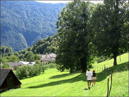 Slovenia - Brinta slap, super-green meadows