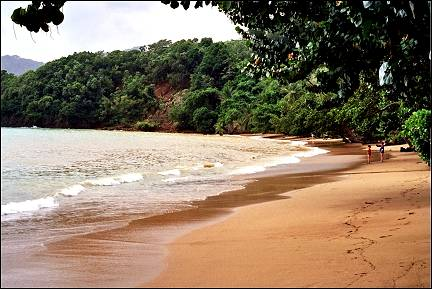 Trinidad and Tobago; - Beach at Blue Waters Inn