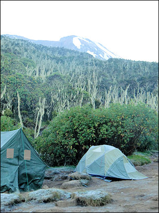 Tanzania - Machame Camp with in the distance the peak of Mt.Kilimanjaro