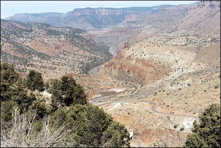 USA, New Mexico - View of Salt River Canyon