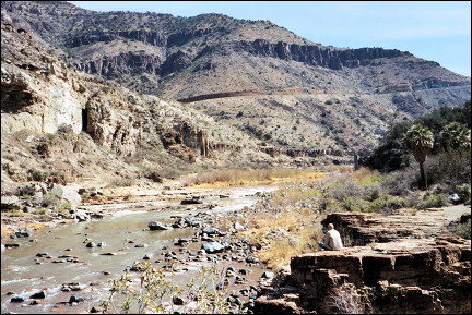 USA, New Mexico - Down in Salt River Canyon