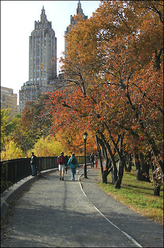 USA, New York - Central Park with autumn colors